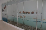 Permanent exhibition in the new Museum of Lepenski Vir – a view on a glass case with Neolithic material